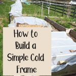 How to Build a Simple Cold Frame