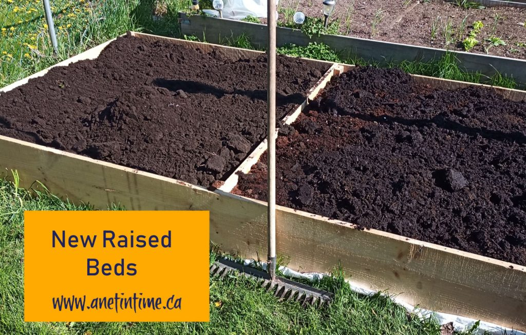 New raised Garden Beds