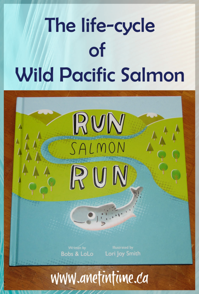 Review image run salmon run