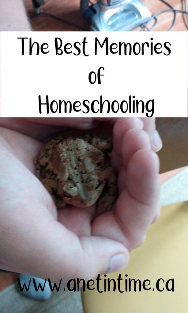 the best memories of homeschooling