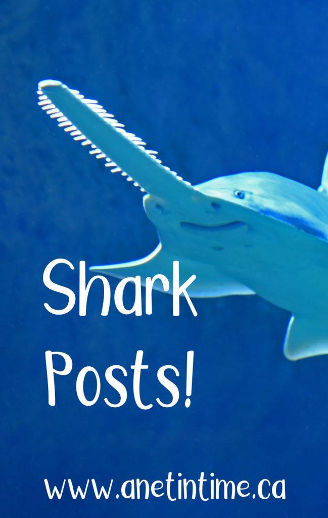 shark-posts