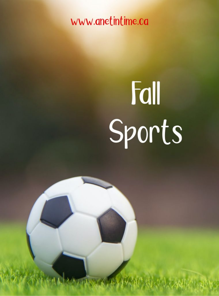 fall sports soccer ball