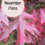 November Plans