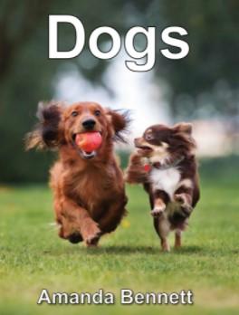 unitstudy dogs