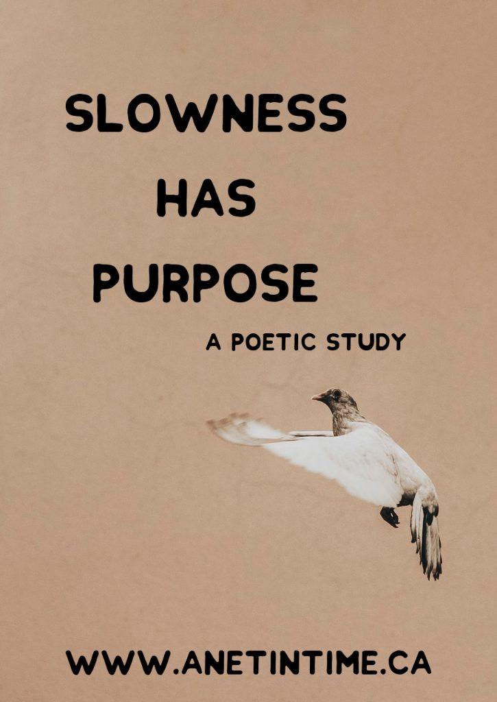 slowness has purpose