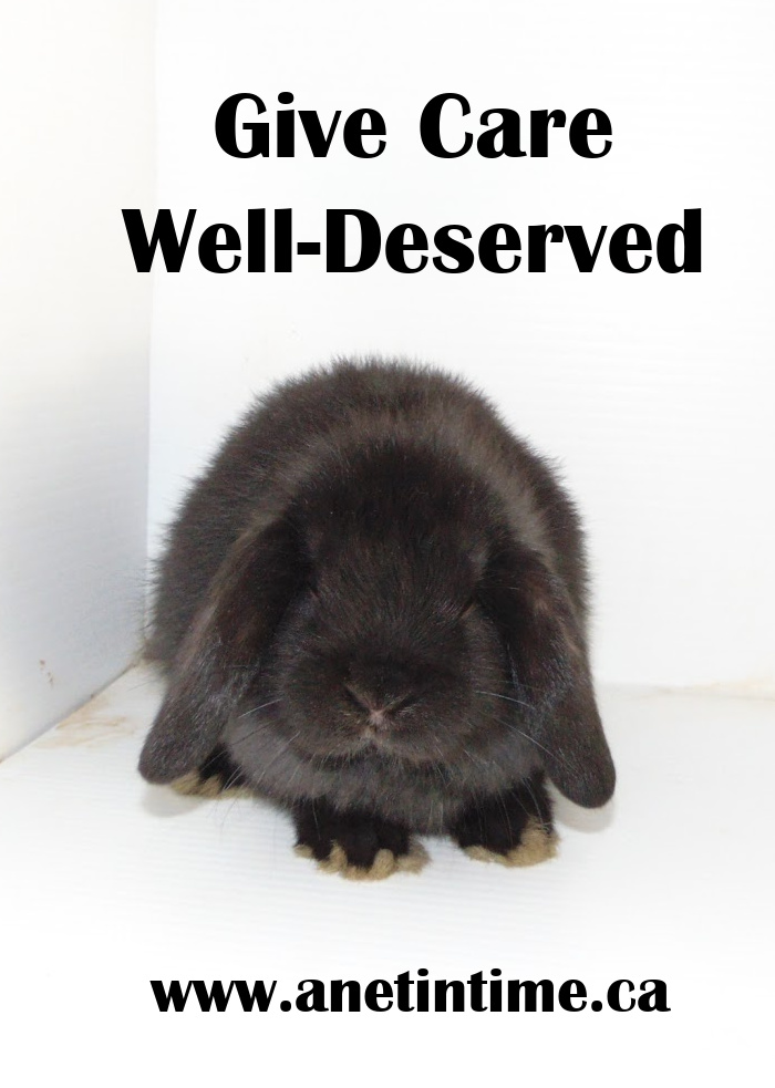 Give Care Well Deserved text, image of black holland lop bunny